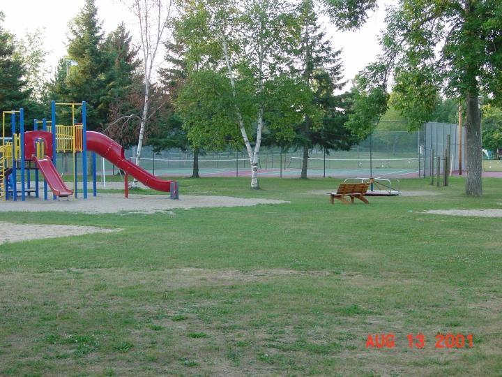 slide11 (2)